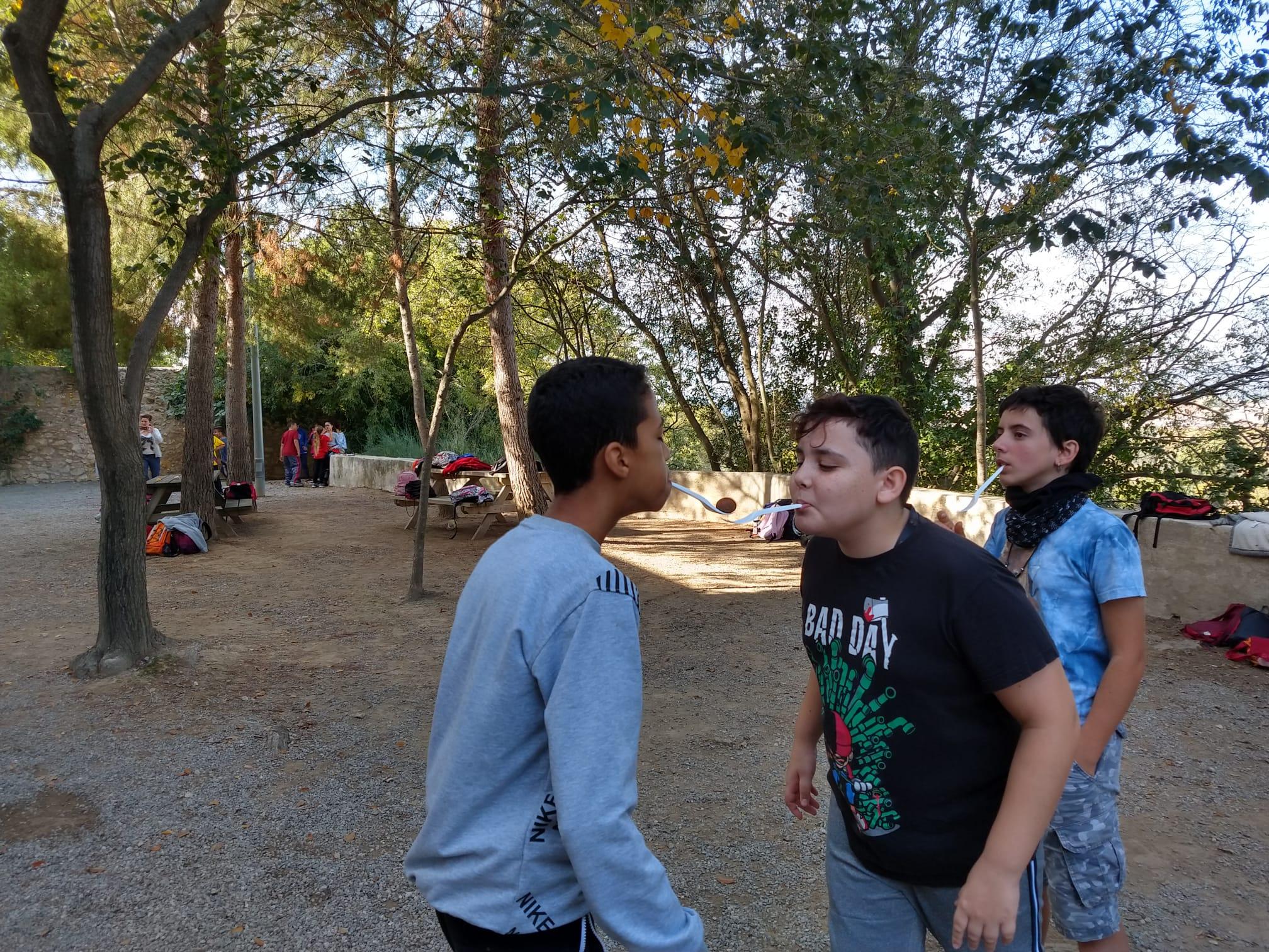 castanyada excursio (6)